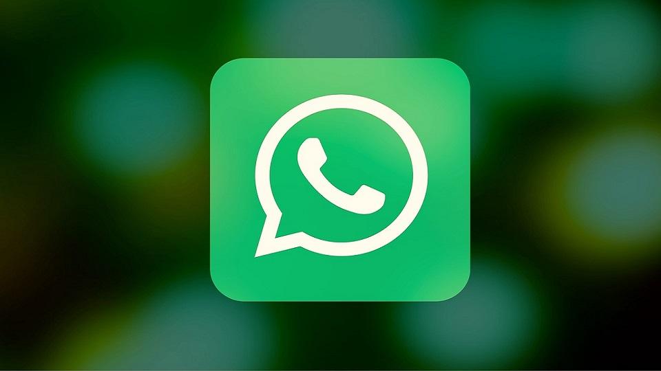 whatsapp-federadiove