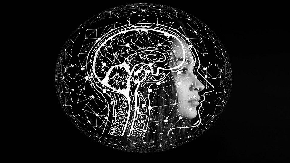 inteligencia artificial-federadiove