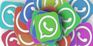logo whatsapp - federadiove