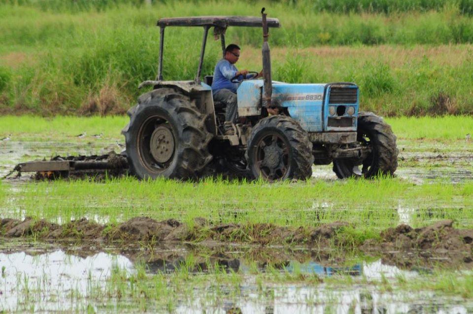 agricultor-federadio