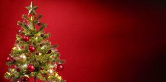 Navidad-federadiove