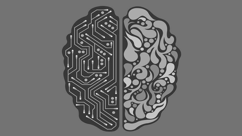 inteligencia artificial - federadiove